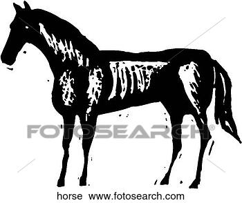 剪贴画 马