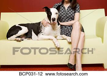 Stock Photo - woman sitting on couch with great dane. fotosearch