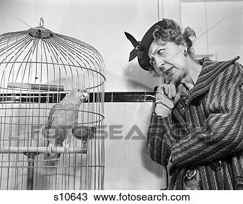 Stock Photo - 1940s funny woman  in hat & coat  talking to parrot  in bird cage.  fotosearch - search  stock photos,  pictures, wall  murals, images,  and photo clipart