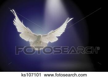 Arquivo de Fotografia - voando, através,  viga, luz, digital,  composto. fotosearch  - busca de fotos,  imagens e clipart
