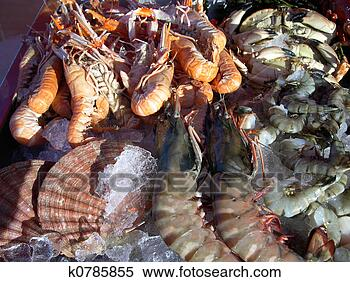 Stock Image - seafood. fotosearch - search stock photos, pictures, wall murals, images, and photo clipart