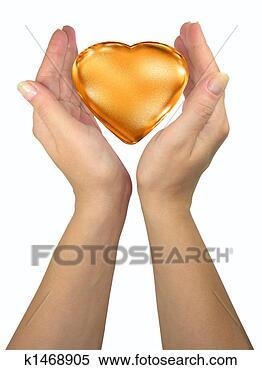 Stock Afbeelding - menselijk, dame,  handen, vasthouden.  fotosearch - zoek  stockfoto's, beelden,  muurkunst, afbeeldingen  en foto-clipart