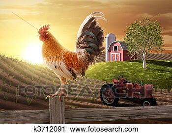 Clipart - país, fazenda,  manhã. fotosearch  - busca de imagens  de vetor grã¡fico,  desenhos, clip  art, ilustraã§ãµes