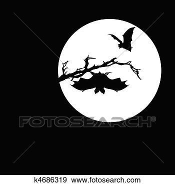 - 蝙蝠, 在上