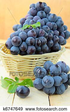 Banque de Photographies - brosse, noir,  doux, raisins.  fotosearch - recherchez  des photos, des  images et des  cliparts