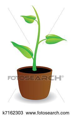 手绘图 - 盆栽, 植物,