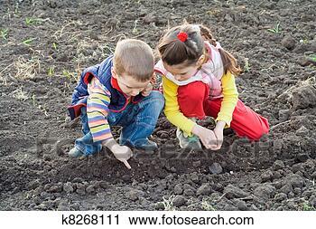 Arquivos de Fotografia - dois, pequeno, crianças, sementes plantando, ligado, a, campo. Fotosearch - Busca de Fotos, Imagens, Impressões e Clip Art