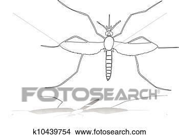 手绘图 - 蚊子