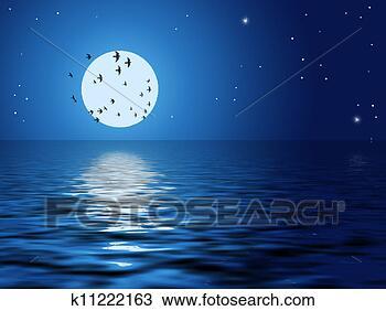 月亮, 鸟, 星, 海洋