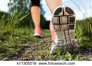 Foto - andar, ou, executando, pernas, em, floresta, aventura, e, exercitar. Fotosearch - Busca de Imagens Fotográficas, Impressões e Fotos Clip Art