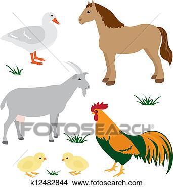 - 农场, 动物
