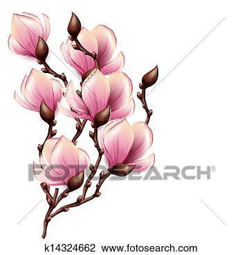 magnolia branch clip art - photo #6