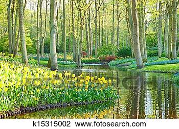 Stock Photo - A scenic spring garden with tulips and water. Fotosearch - Search Stock Photography, Print Pictures, Images, and Photo Clip Art