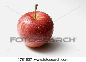 Picture - a fresh apple.  fotosearch - search  stock photos,  pictures, images,  and photo clipart