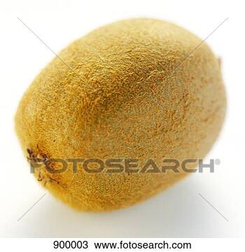 الانكليزي Kiwifruit Kiwi-fruit_%7E900003