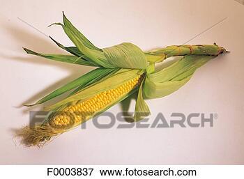玉米叶贴画图片大全