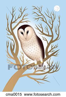 스톡 일러스트 - a, 헛간 올빼미, 에서, a, 나무, 와..., 달 cma0015 ...