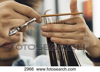 Banco de Imagem - cabeleireiras,  corte, mulher,  cabelo, salão,  close-up, mãos.  fotosearch - busca  de fotos, imagens  e clipart
