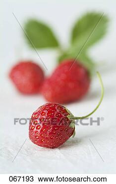 frukt utveckling hd spelautomat