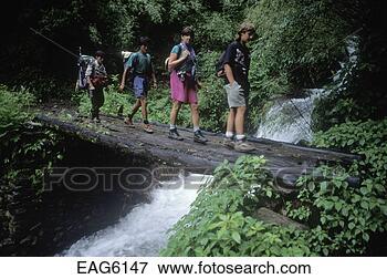Foto - trekkers,   crucifixos,    passarela,    medir,   fluxo,    dolpo. fotosearch  - busca de fotos,  imagens e clipart