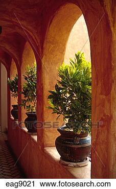 Stock fotografie spanischer hacienda stil landhaus - Gartenbau beschattet ...
