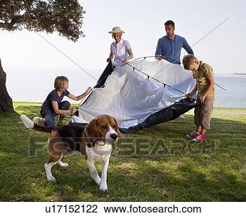 Banco de Imagem - família, acampamento,  mar. fotosearch  - busca de fotos,  imagens e clipart