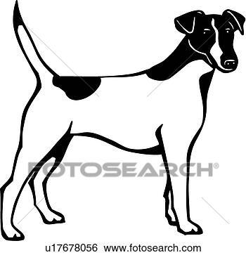 bobbie gambel boston terriers