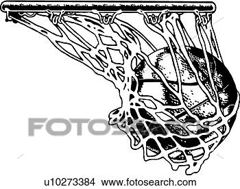 Basketball Net Vector Clipart