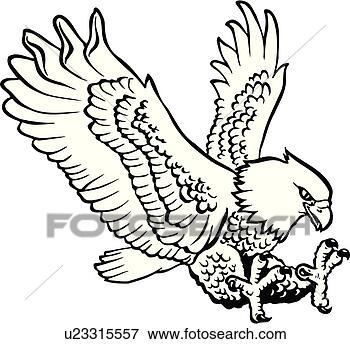 Santanoriess Eagle Illustration