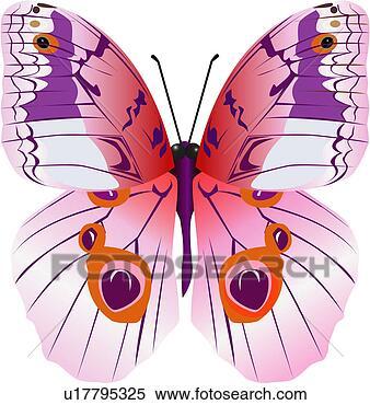 Κλιπαρτ - αρθρόποδα, έντομο, ζώο, εποχή