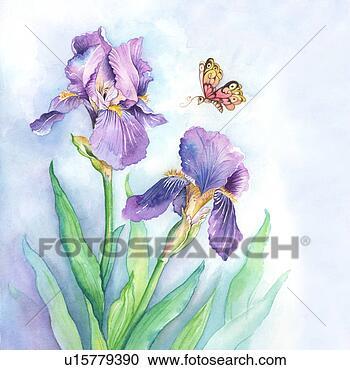 Stock illustrationen insekten aquarellgem lde von a for Kleine fliegen blumen