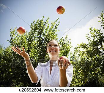 Banco de Imagem - mulher, juggling,  maçãs, pomar.  fotosearch - busca  de fotos, imagens  e clipart