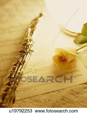 score-flute-rose_~u19792253.jpg