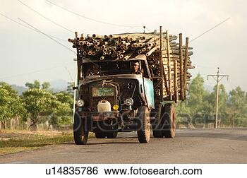 Stock Photo - truck carrying logs. fotosearch - search stock photos, pictures, wall murals, images, and photo clipart