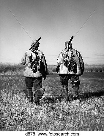 Banco de Imagem - dois, men, costas,  vista, andar,  campo, pato, caça,  desporto. fotosearch  - busca de fotos,  imagens e clipart