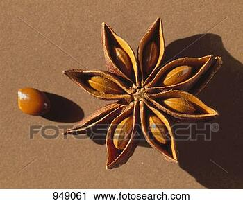 Stock Photography - star anise, opened. fotosearch - search stock photos, pictures, images, and photo clipart