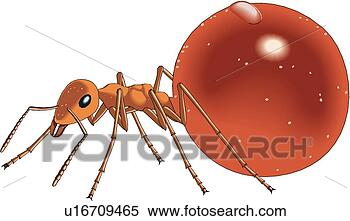 Stock Illustration - ant. fotosearch  - search clipart,  illustration,  drawings and vector  eps graphics images